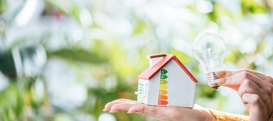 cropped view of led lamp and carton house model in woman hands, energy efficiency at home concept